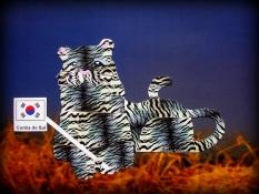 O tigre da Coreia do Sul, por Lais Sobral : www.flickr.com/photos/lais-sobral/
