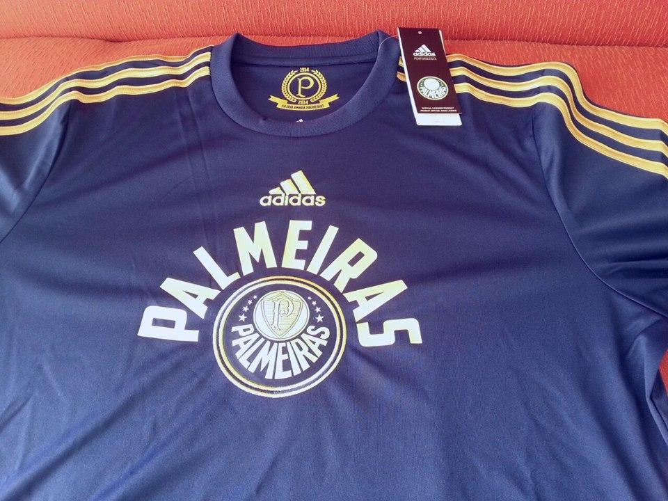 4a498add6c39c Camisa de goleiro do centenário do Palmeiras