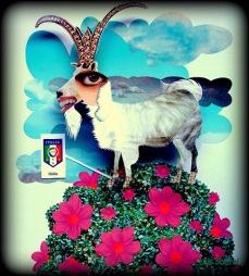 Mascotinha da Azzurra por Lais Sobral: http://www.flickr.com/photos/lais-sobral/