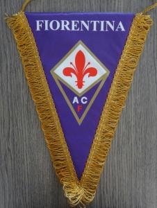 fiorentina DSC07345-1