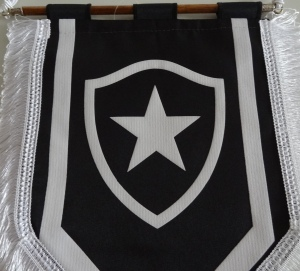 Botafogo dsc022901 (1)