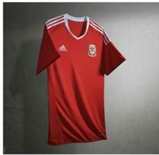 País de Gales (Adidas)